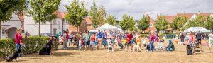 Kilnwood Vale Community Day